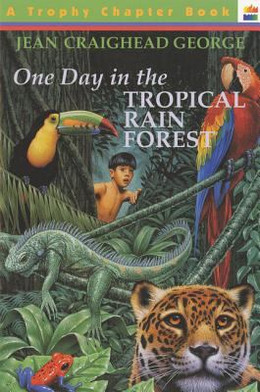 One Day in the Tropical Rain Forest B1239