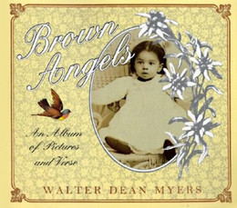 Brown Angels : An Album of Pictures and Verse B2880