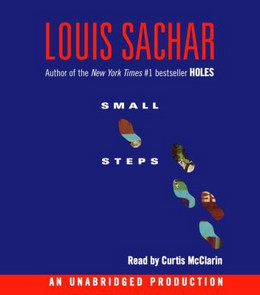 Small Steps (Audio Book on CD) CD3805