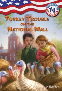 Turkey Trouble on the National Mall B5433