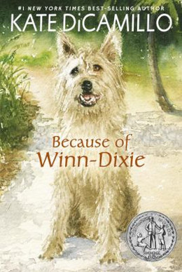 Because of Winn-Dixie B0959
