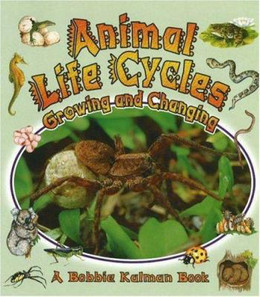 Animal Life Cycles : Growing and Changing B8368