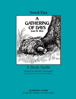 Gathering of Days: A New England Girl's Journal (Novel-Tie) S0629