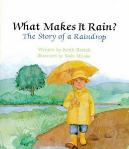 What Makes it Rain?: Story of a Raindrop, Brandt B1784