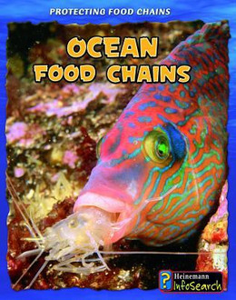 Ocean Food Chains 9781432938666