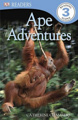 Ape Adventures, Level 3 B8338