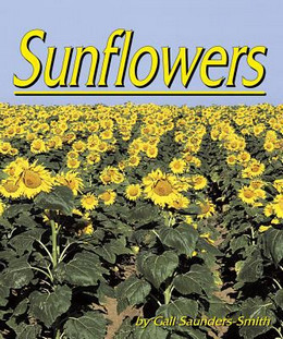 Sunflowers B2347