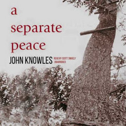 Separate Peace (Audio Book on CD) CD0096