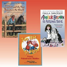 Classroom Library Grade 3 - Collection 3 CL3B