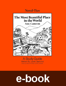 Most Beautiful Place in the World (Novel-Tie eBook) EB0299