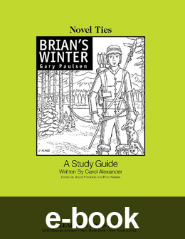 What does Brian look like from Hatchet and Brian's Winter?