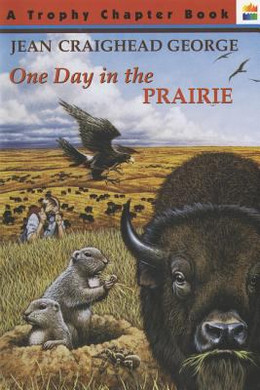 One Day in the Prairie, George B2782
