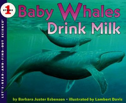Baby Whales Drink Milk B1570