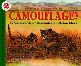 WHAT COLOR IS CAMOUFLAGE?, Otto B2765