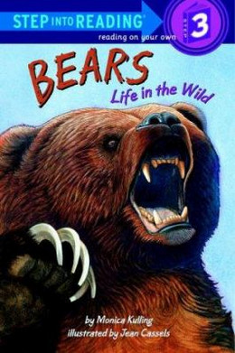 BEARS: LIFE IN THE WILD: Cullen B1577