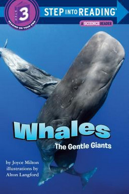 Whales : The Gentle Giants B1282