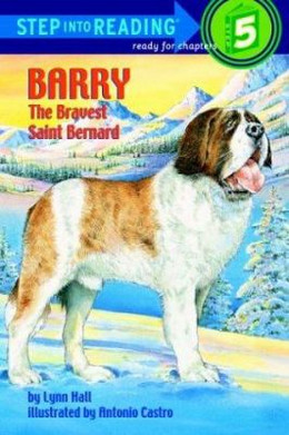 Barry the Bravest St Bernard B3737