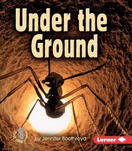 Under the Ground, Boothroyd 9780822556619