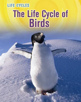 Life Cycle of Birds 9781432949860