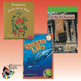 Common Core Informational Text & Fiction Library - Level K LLCCK