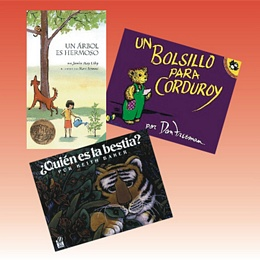 Spanish Picture Books - Set 4 SP4